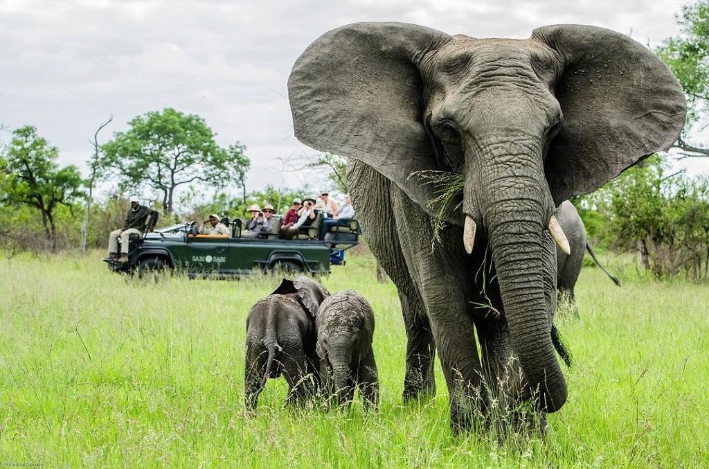 Kruger National Park - Richard de Gouveia