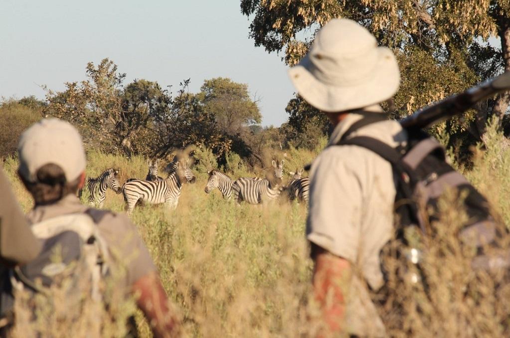 Walking and Riding Safari Botswana - David Foot